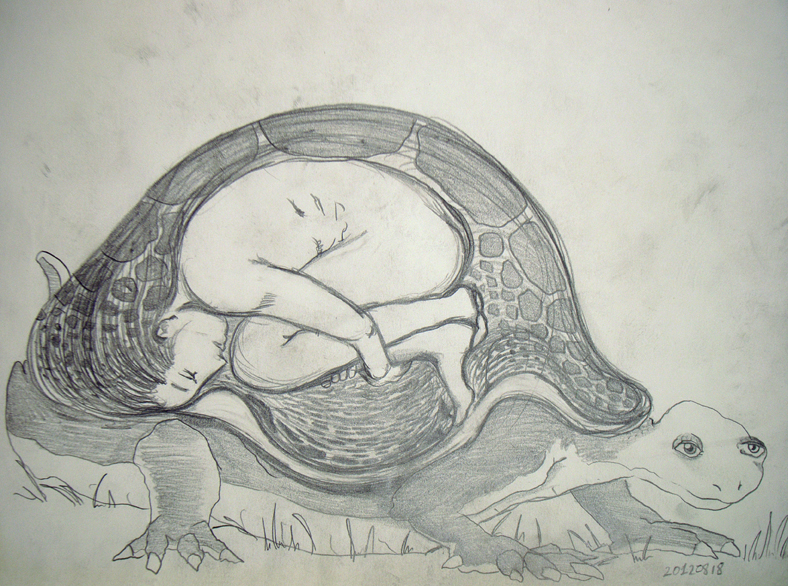 a woman in a turle's dream, a drawing